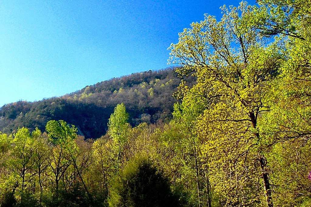 Jones-Gap-State-Park