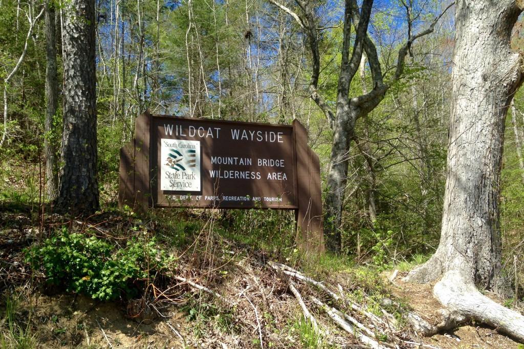 Wildcat Wayside 5