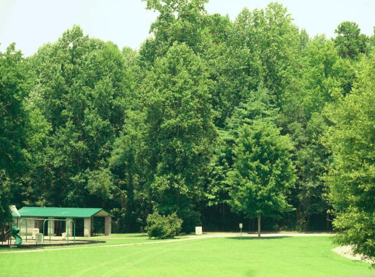 Poinsett Park