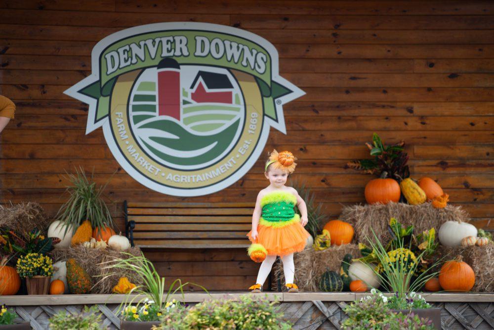 Denver Downs Visit
